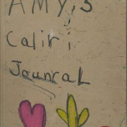 Caliri,-Amy,-2014,-ARTIST-BOOK-1