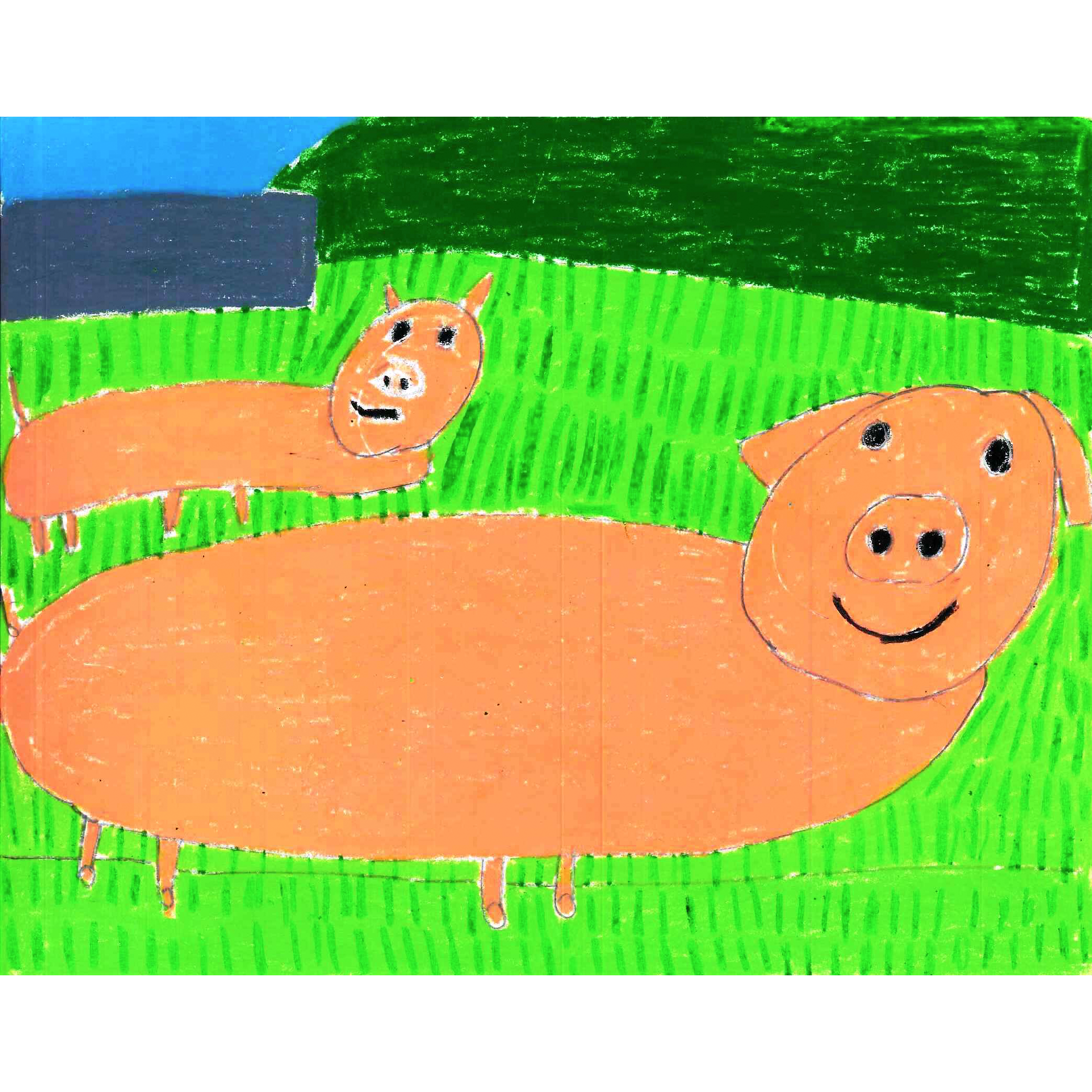 Spring Drawing (pigs) by Carmen Martinez