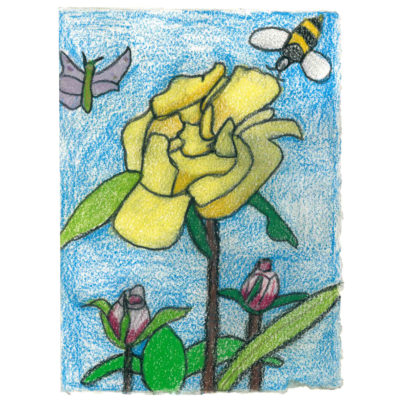 Flowers and Bugs by June Sibley