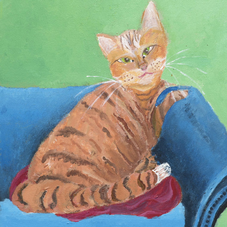 Jane Tarlow | All About Cats & Dogs
